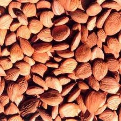 100ml Almond Sweet Oil 甜杏仁油