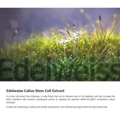 Edelweiss Pure Sun Cream 50ml